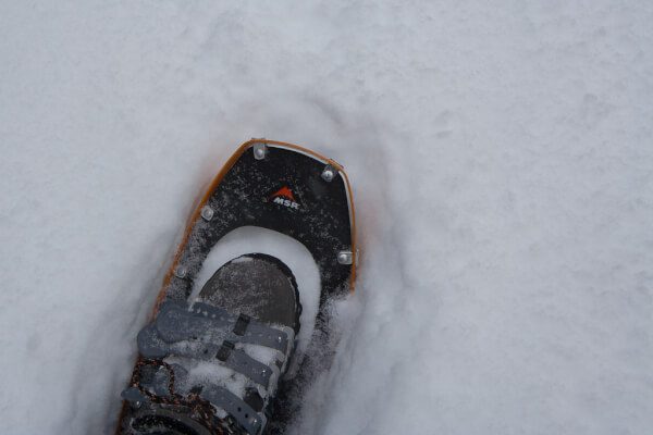 Snowshoe and boot